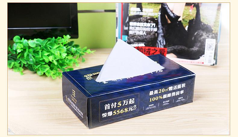 盒装纸巾印刷